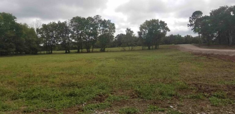MLS# 21029251 Tract 11 Lawdy