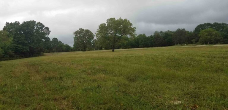 MLS# 21029376 TRACT 12 LAWDY