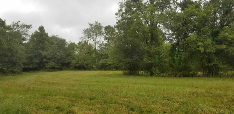MLS 21029447 TRACT 13 LAWDY